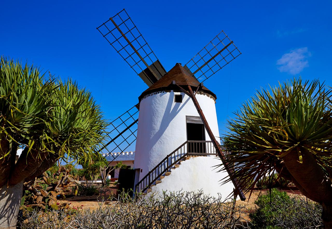 Escursioni e cosa vedere a Fuerteventura