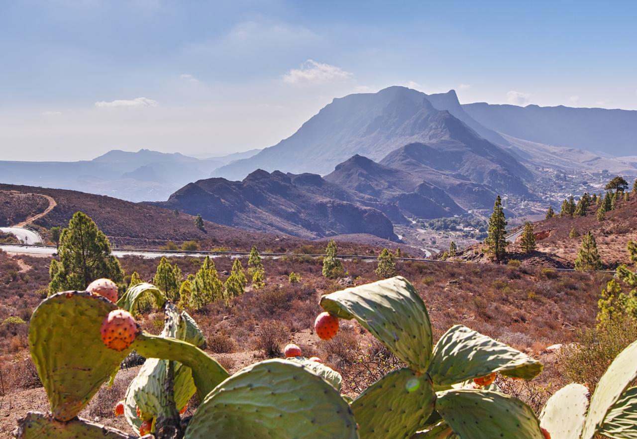 Le migliori cose da visitare a Gran Canaria