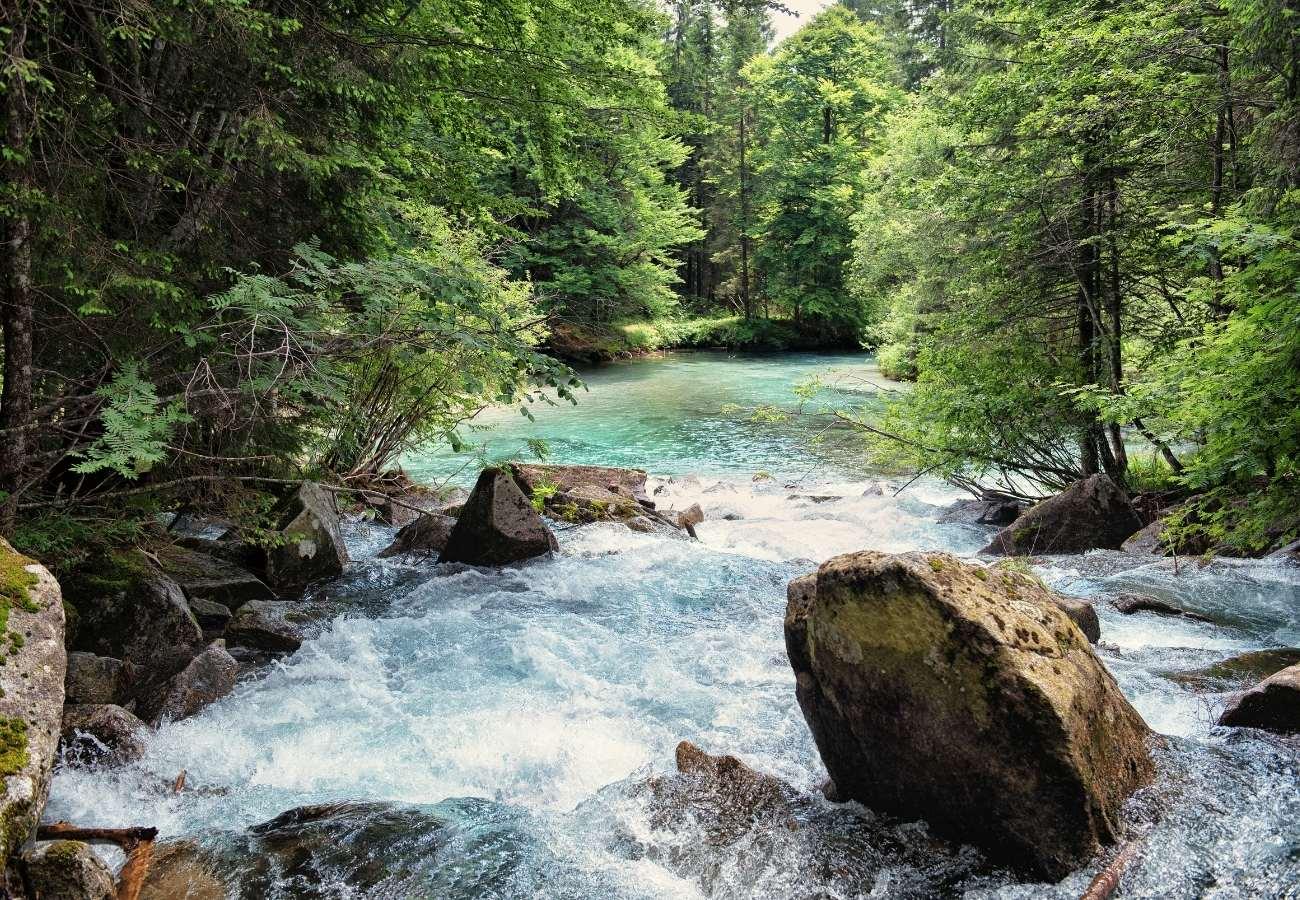Informazioni utili e curiosità sul comprensorio della Val Rendena.