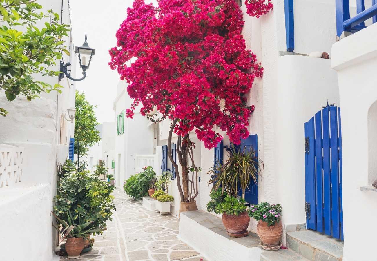 Viaggi in Grecia: Aggiornamento Covid-19